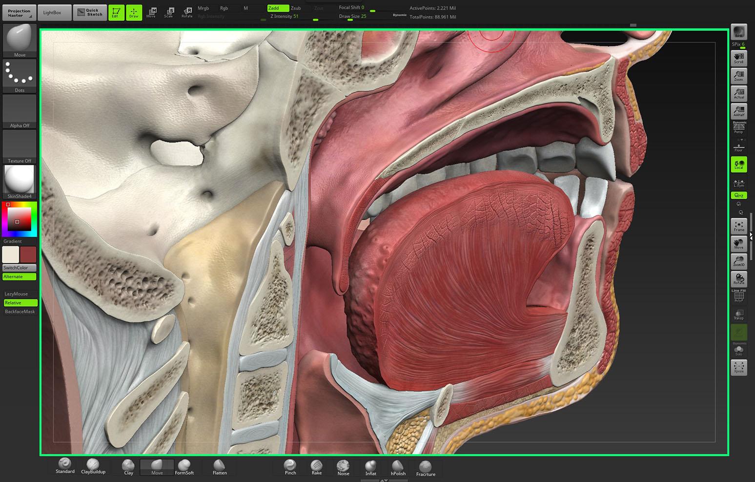 INTERVOKE: Interactive Software   Educational Videos   Patient Education
